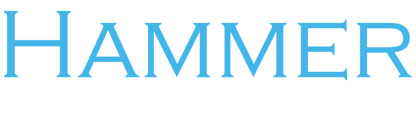 Hammer Solutions Inc